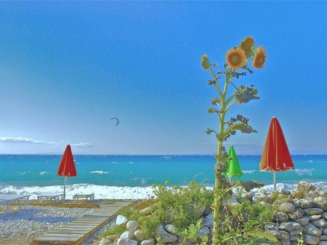 Παραλία Κέδρος