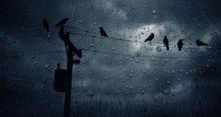 Βροχοπτώσεις